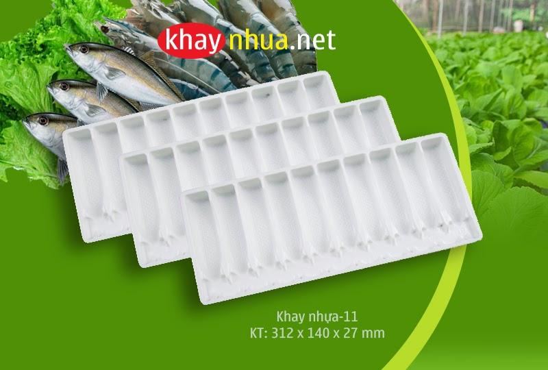 Khay nhựa định hình 11